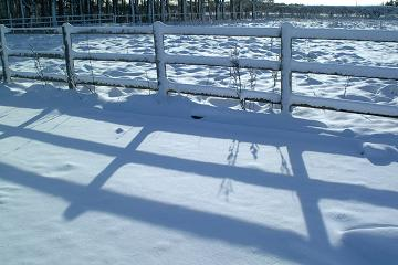 image of sun shining through timber fence onto snow covered ground